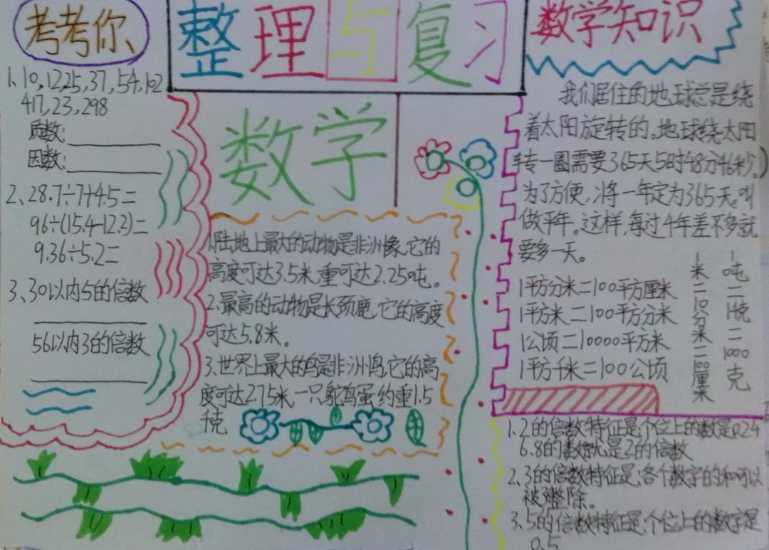 整理与复习手抄报版面设计图5幅