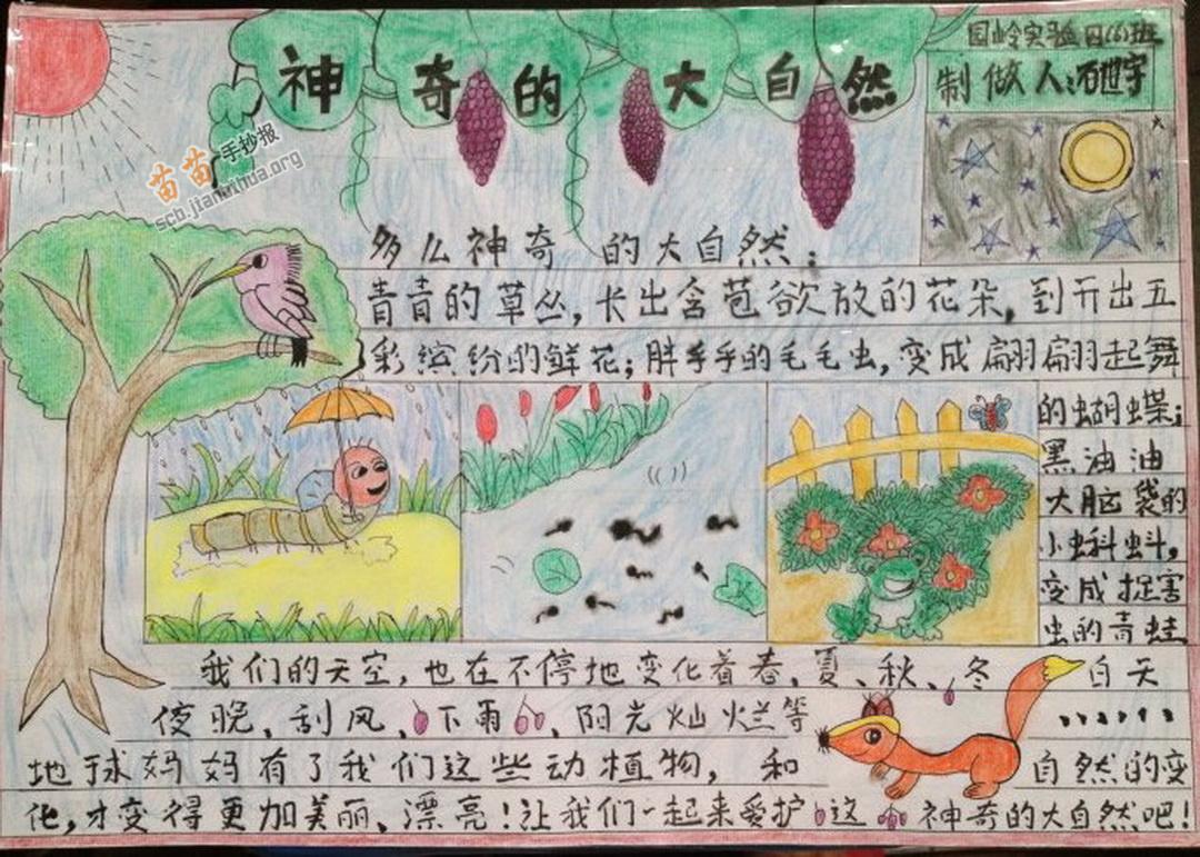 四年级神奇的大自然手抄报