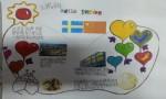 二年级瑞典手抄报内容