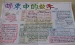 邮票中的数学手抄报图片大全、资料