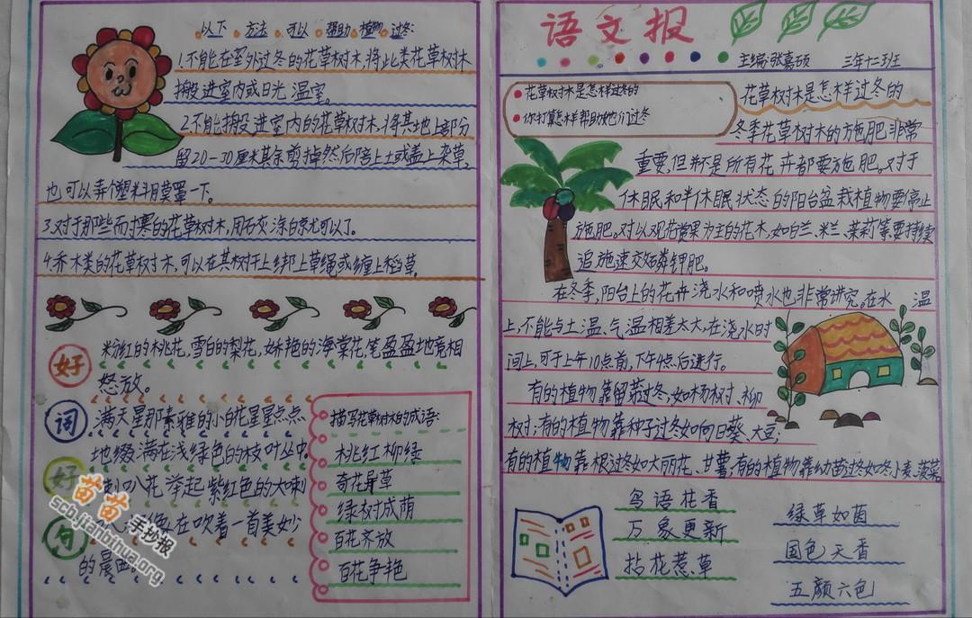 花草树木植物手抄报图片