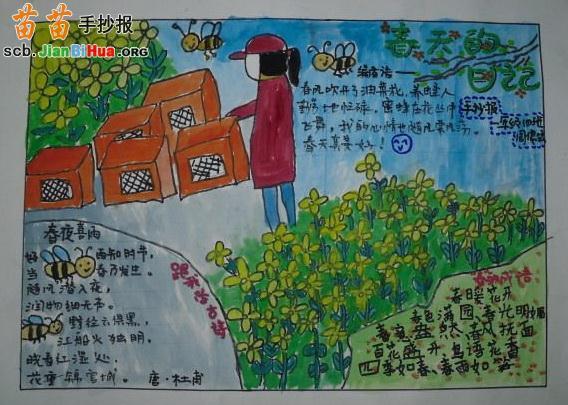 描写景色的手抄报_描写春天的手抄报内容