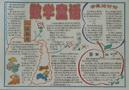 数学童话手抄报图片