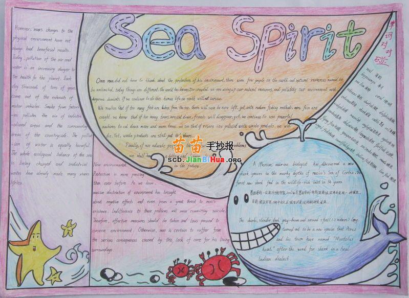 小学生海洋英语手抄报