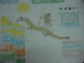 关于龙的童话手抄报